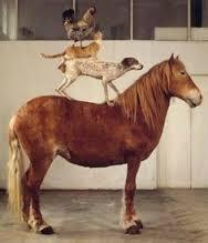 horsedogcatchicken