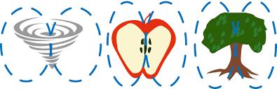 TRADITIONAL OSTEOPATHIC TREATMENTS (HOLISTIC) Apple-torus